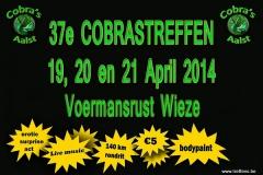 20140419_cobrastreffen